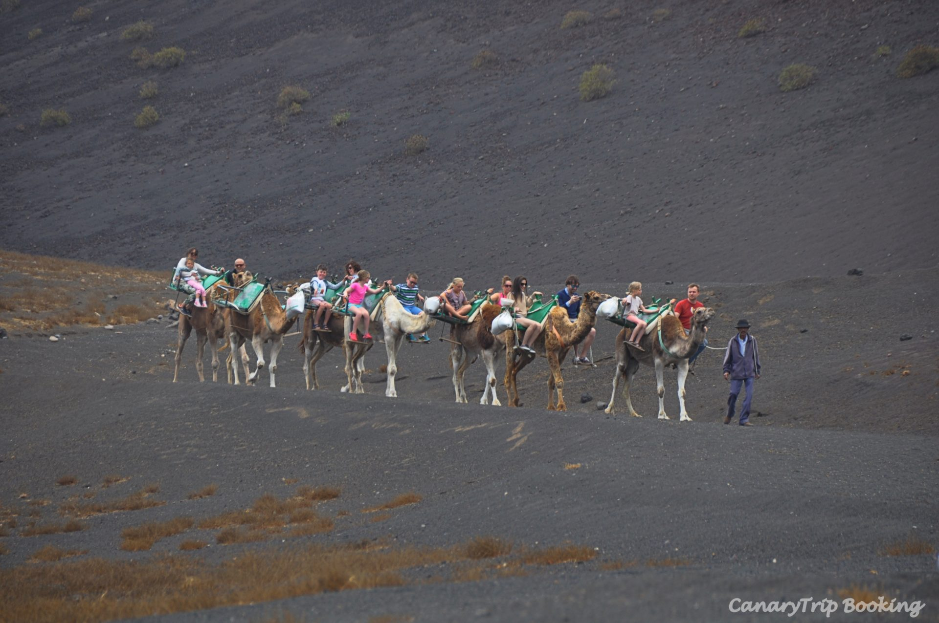 paseo-camellos-timanfaya-canary-trip-booking