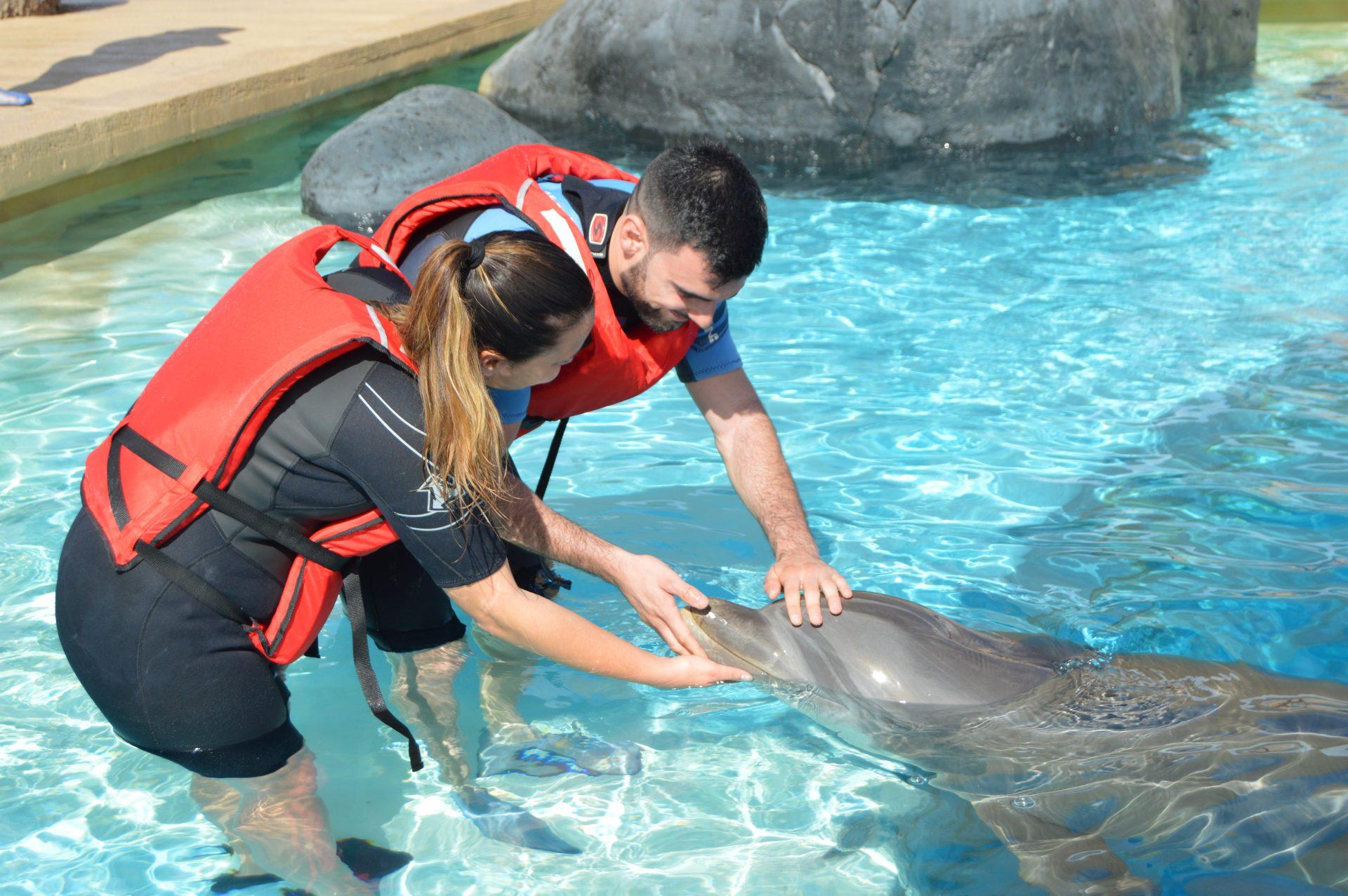 rancho texas delfin