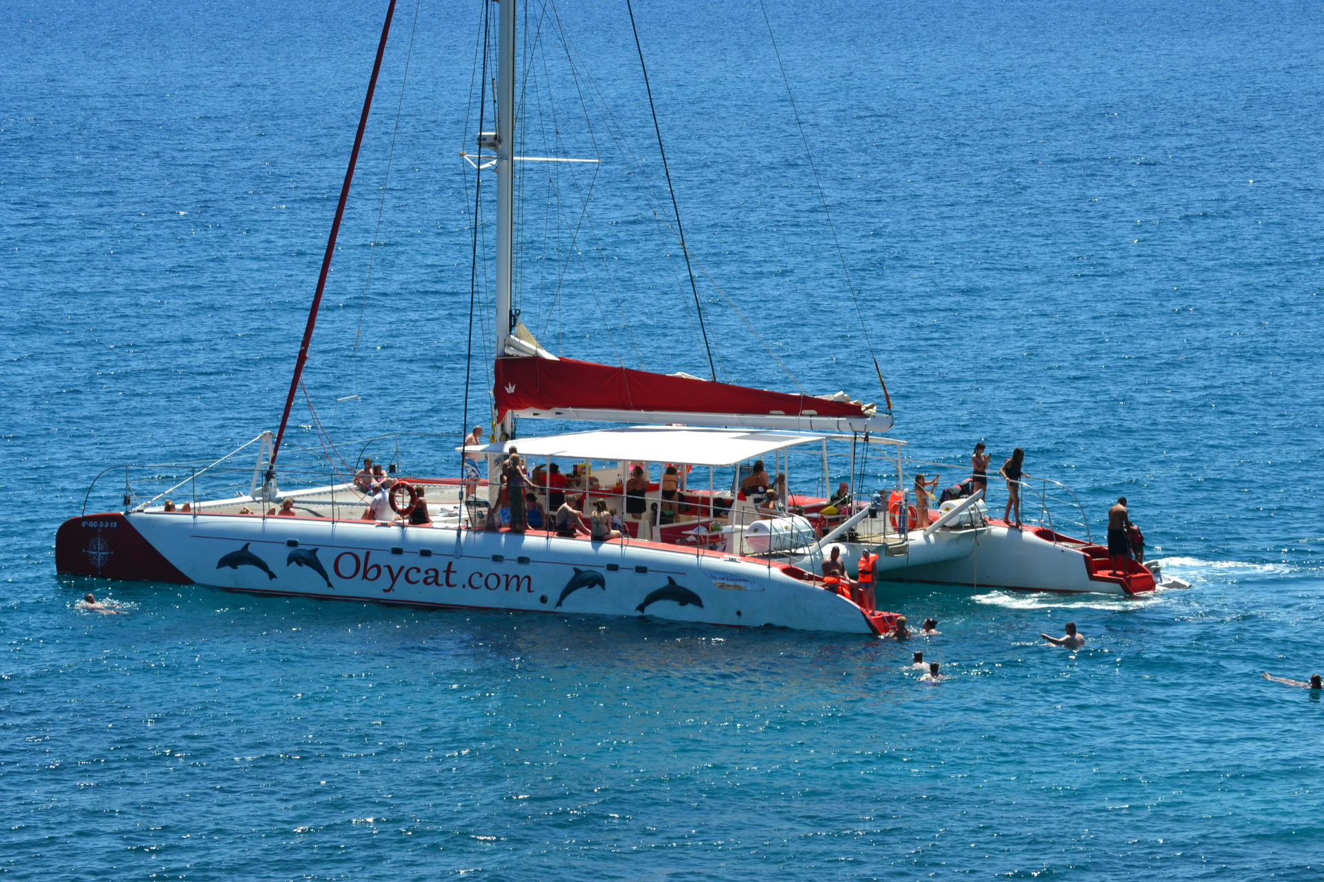 dia en catamaran fuerteventura canary trip booking