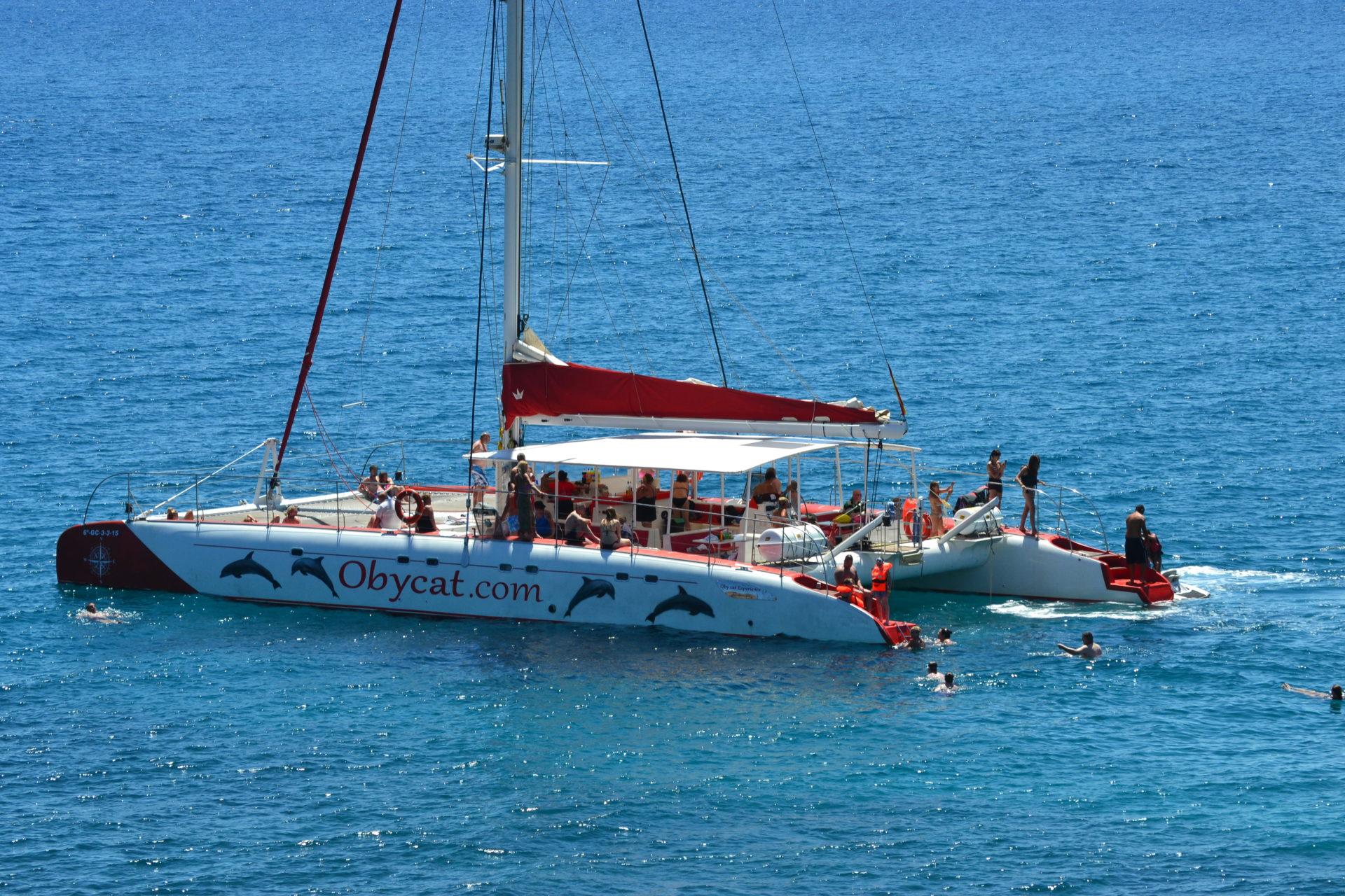 dia en catamaran fuerteventura canary trip booking