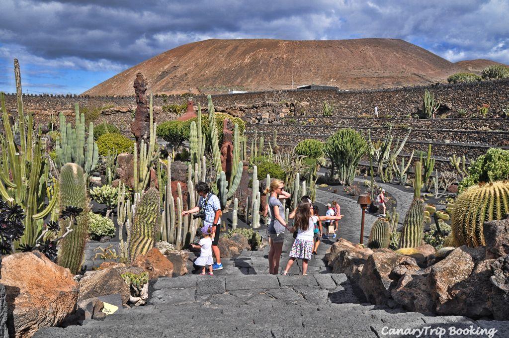 jardin-de-cactus-lanzarote-canary-trip-booking