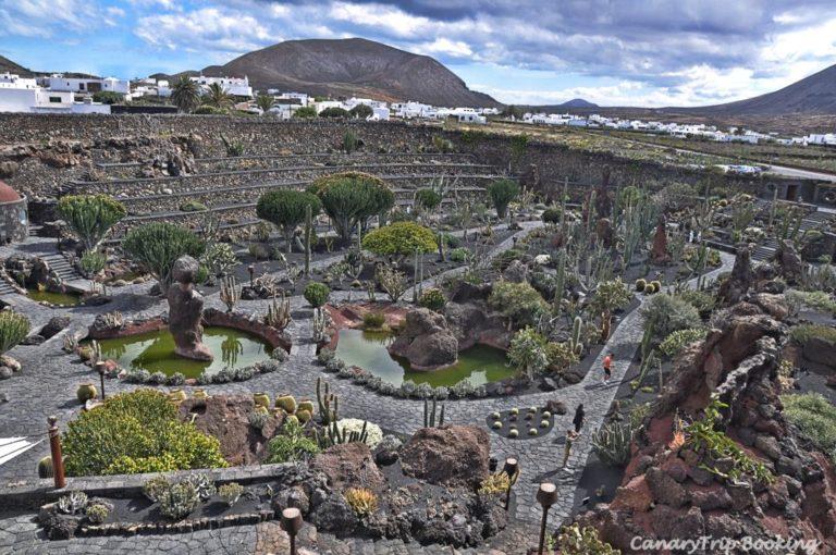 vista-panoramica-jardin-de-cactus-canary-trip-booking