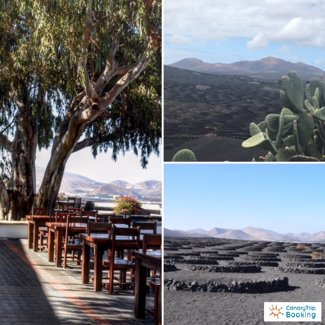 discover lanzarote in 3 days
