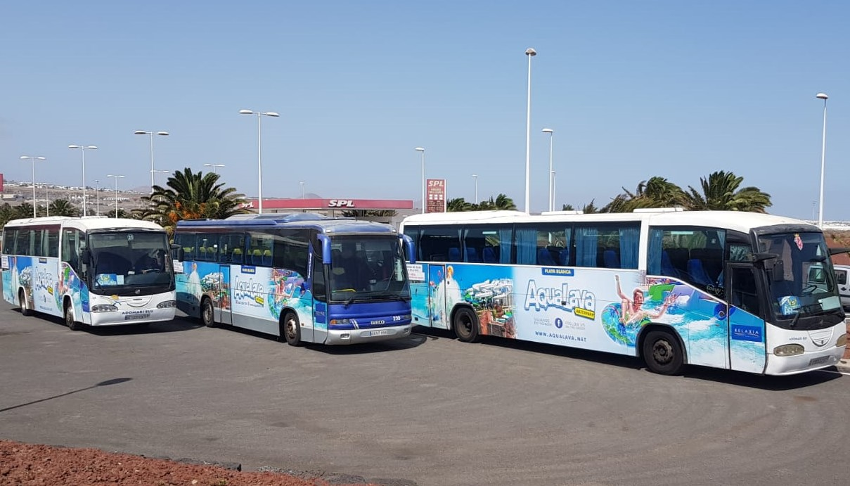 flota bus