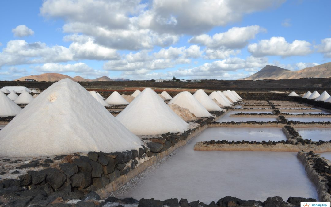 Salt flats of Lanzarote