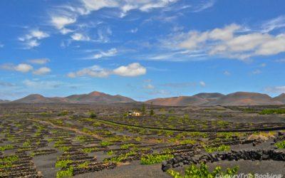 Ruta del vino por La Geria, Lanzarote
