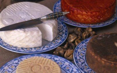 Cheese route of Fuerteventura